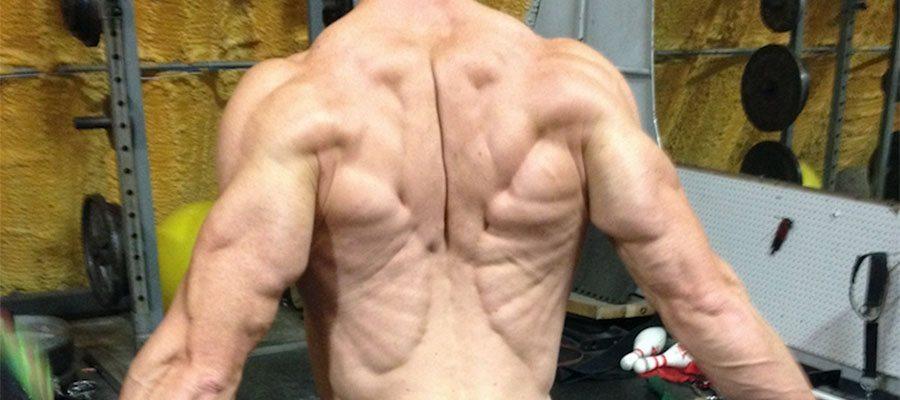 Back Section Header PUMP